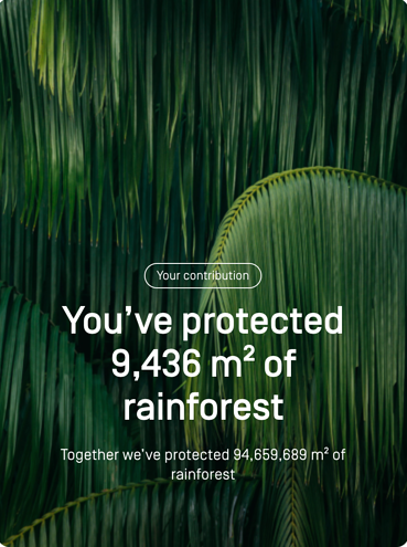 Screenshot of how much of the rainforest you have protected.
